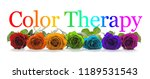 color healing therapy banner   ... | Shutterstock . vector #1189531543