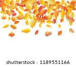 oak  maple  wild ash rowan... | Shutterstock .eps vector #1189551166