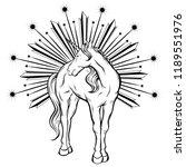 vector hand drawn illustration...   Shutterstock .eps vector #1189551976