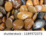modern style close up wet round ...   Shutterstock . vector #1189572373