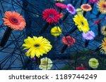 autumn outdoor floral...   Shutterstock . vector #1189744249
