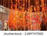 autumn indoor floral decorations   Shutterstock . vector #1189747000