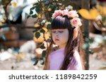 very beautiful elf girl.... | Shutterstock . vector #1189842259