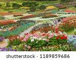 chiang rai  thailand   march 12 ... | Shutterstock . vector #1189859686
