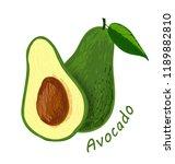 avocado  fruit doodle drawings... | Shutterstock .eps vector #1189882810