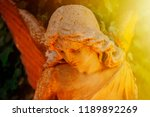 Wonderful Angel In The Rays Of...