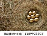 Golden Eggs In Nest. Straw...