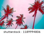 coconut palm trees   tropical...   Shutterstock . vector #1189994806