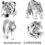 vector drawings sketches... | Shutterstock .eps vector #1190054086
