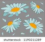 chamomile vector illustration.... | Shutterstock .eps vector #1190211289