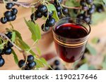 homemade liqueur made from... | Shutterstock . vector #1190217646