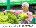 portrait of senior woman sells... | Shutterstock . vector #1190227963