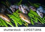 smoking fish in rural... | Shutterstock . vector #1190371846