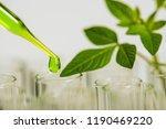 pipette over test tube dropping ... | Shutterstock . vector #1190469220