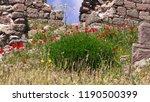 pergamon museum  ruins of... | Shutterstock . vector #1190500399