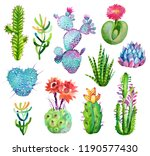 watercolor hand drawn cactus... | Shutterstock . vector #1190577430