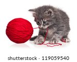 Stock photo cute little kitten playing with ball of red yarn isolated on white background 119059540