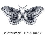 hand drawn butterfly tattoo.... | Shutterstock . vector #1190610649