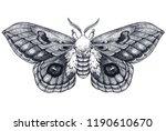 hand drawn butterfly tattoo.... | Shutterstock . vector #1190610670