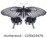 beautiful butterfly tattoo... | Shutterstock . vector #1190610676