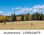 woman hiking across a grassy... | Shutterstock . vector #1190616679