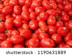 red tomatoes in the market | Shutterstock . vector #1190631889