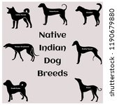 native indian dog breeds | Shutterstock .eps vector #1190679880