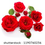 Stock photo red beautiful roses isolated on white background 1190760256