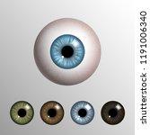 vector realistic 3d human... | Shutterstock .eps vector #1191006340
