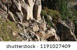 mother and baby mountain goat... | Shutterstock . vector #1191027409