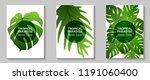 tropical paradise leaves vector ...   Shutterstock .eps vector #1191060400