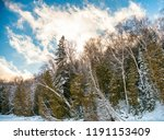 striking view looking up... | Shutterstock . vector #1191153409
