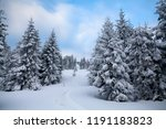 christmas and new year... | Shutterstock . vector #1191183823