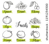 hand drawn sketch style fruits... | Shutterstock .eps vector #1191254500
