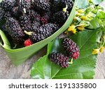 mulberries and green leaf on... | Shutterstock . vector #1191335800