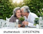 portrait of asian senior man...   Shutterstock . vector #1191374296