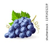 blue black grape with a leaf on ... | Shutterstock .eps vector #1191421219