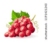 red grape with a leaf on white. ... | Shutterstock .eps vector #1191421243