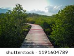 mangrove leaves and wood bridge | Shutterstock . vector #1191604789