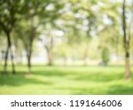 abstract blur green color at... | Shutterstock . vector #1191646006