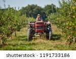 young farmer woman driving her...   Shutterstock . vector #1191733186