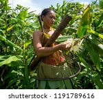 indians of the mentawai tribe ... | Shutterstock . vector #1191789616