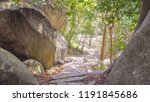 Natural Rocky Path In A...