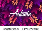 autumn leaves. natural... | Shutterstock .eps vector #1191890500