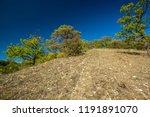 scorched autumn landscape ... | Shutterstock . vector #1191891070
