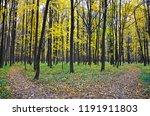 beautiful autumn landscape ... | Shutterstock . vector #1191911803