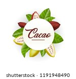 poster for chocolate and cacao... | Shutterstock .eps vector #1191948490