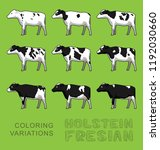 Holstein Fresian Cow Coloring...