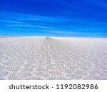 bolivia  salar de uyuni scenic...   Shutterstock . vector #1192082986