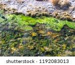 bolivia  salar de uyuni  aguas...   Shutterstock . vector #1192083013